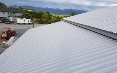 Painting Metal Roof
